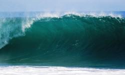 Wellenreiten in Sri Lanka